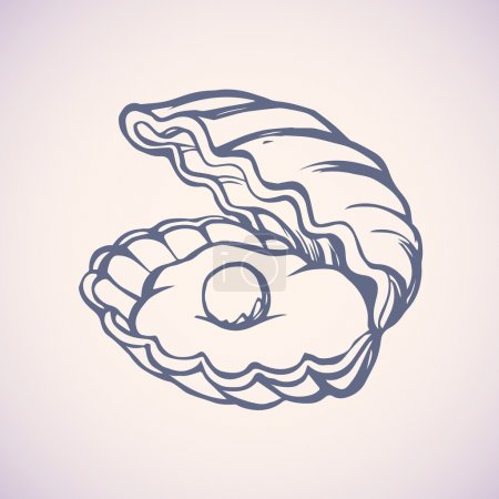 Pearl in shell. Vector drawing
