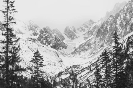 Photo for Mountain range, winter landscape. - Royalty Free Image