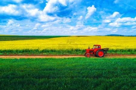Photo for Aerial view over the agricultural field - Royalty Free Image