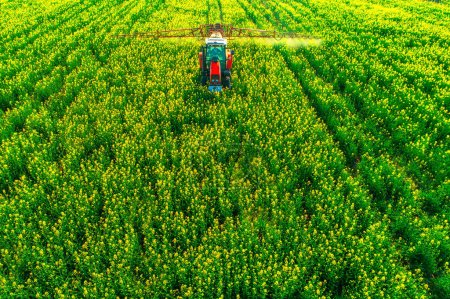 Photo for Aerial view of farming tractor plowing and spraying on field. - Royalty Free Image