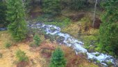 River in forest aerial view