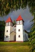 Haapiti church in Moorea island jungle, landscape