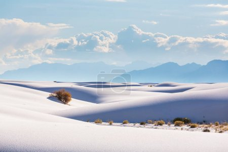 Unusual White Sand Dunes