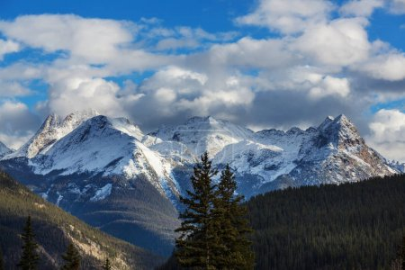 Mountain Landscape in Colorado