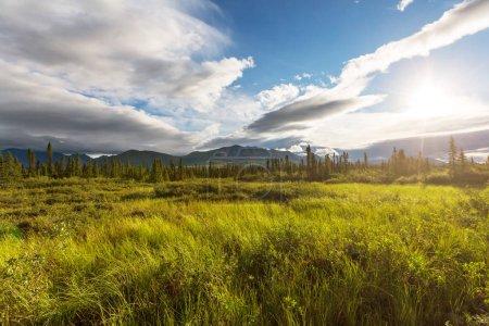 Photo pour Montagnes en Alaska, États-Unis, beau paysage - image libre de droit