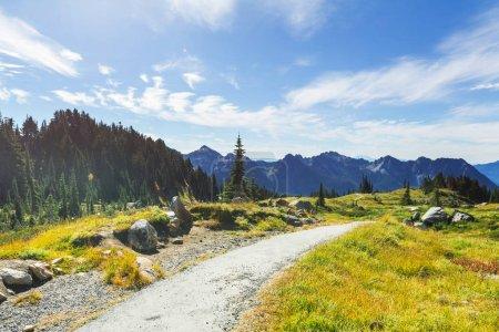 Picturesque mountain landscape