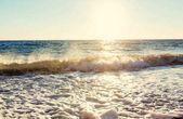 Blue wave on the beach