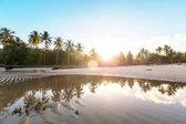 Serenity on the tropical beach