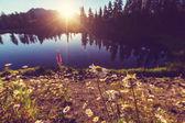 Scenic Picture lake