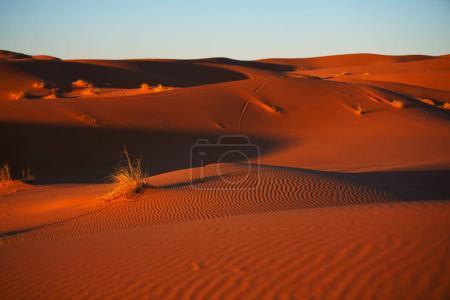Scenic sand dunes in desert...