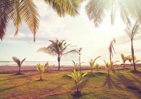 Photo pour Belle côte de l'océan Pacifique tropical au Costa Rica - image libre de droit