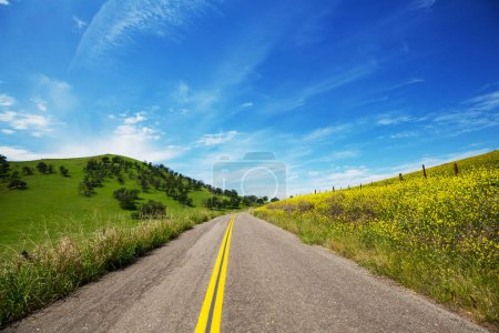 Road in sunny meadow scenic view