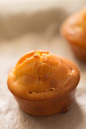 Homemade proja cupcakes, selective focus
