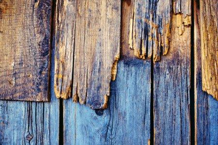 Photo pour Texture rugueuse du bois altéré, planches de bois obsolètes - image libre de droit