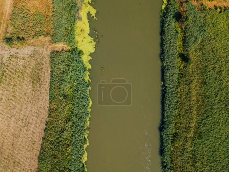 Photo for Aerial view of the river from drone point of view, top view - Royalty Free Image