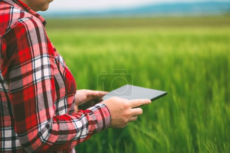 Photo for Female farmer using tablet computer in wheat crop field, concept of modern smart farming by using electronics, technology and mobile apps in agricultural production - Royalty Free Image