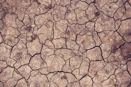Photo for Cracked dry soil ground texture for drought season background - Royalty Free Image
