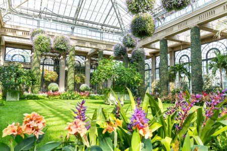 Greenhouse botanical garden