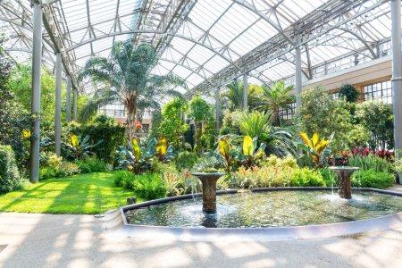 Beautiful garden greenhouse