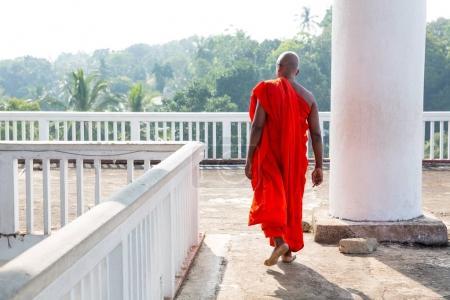 Photo pour Moine bouddhiste au temple du Bouddha de vieux. Ceylan, patrimoine de l'Unesco. Culture de l'Asie, religion bouddhisme - image libre de droit