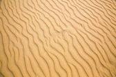 sandy waves of beach