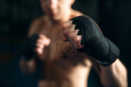young muscular boxer