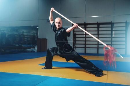 masculine wushu fighter