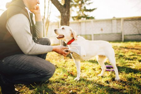 male cynologist with trained working dog, training outdoor