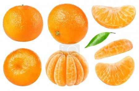 isolierte Mandarinensammlung
