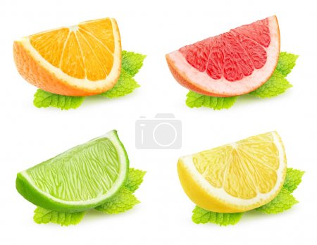 Photo for Collection of isolated citrus slices with mint. Pieces of orange, grapefruit, lime and lemon with mint leaf isolated on white background with clipping path - Royalty Free Image