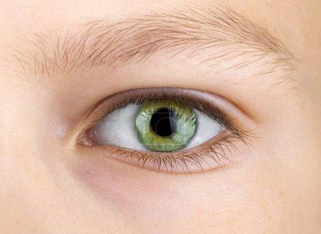 green eye of child