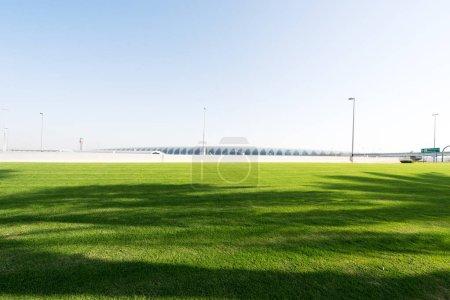 beautiful green meadow near river in Dubai in blue sky