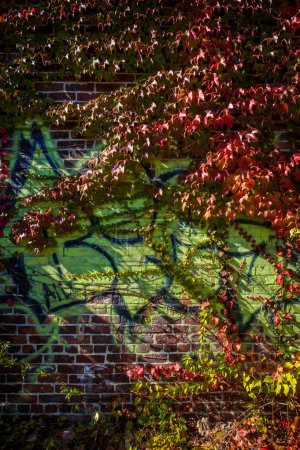 Brick urban alleyway with graffiti