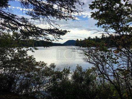 Photo pour Beau coucher de soleil dans la forêt du lac - image libre de droit