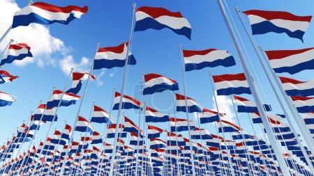 Niederländische Flaggen wehen im Wind gegen blauen Himmel.