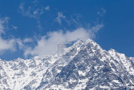Photo for View on snowy Dhauladhar peak in Himalayas from Dharamshala, India - Royalty Free Image