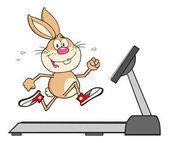 Smiling Rabbit Cartoon Character Running