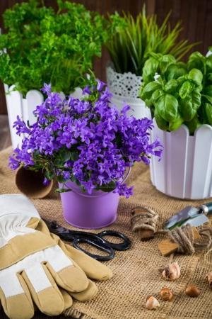 Planting flowers with garden tools