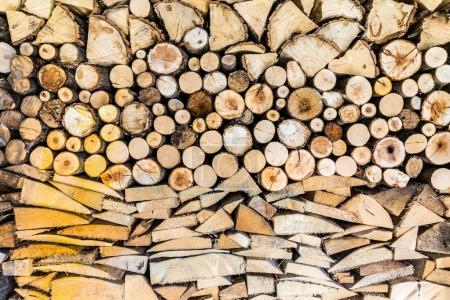 Pile of wood logs in the garden