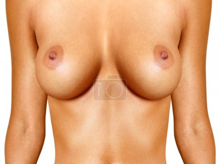 beautiful female breast on white background