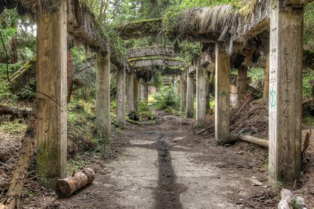 Ruins of the former the tin mine Rolava also known...