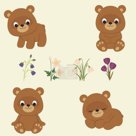 Illustration pour Ours oursons et fleurs de printemps. Bébé ours brun dans différentes poses. Fleurs printanières : bleuets, anémones, gouttes de neige, crocus. Illustration vectorielle - image libre de droit