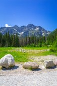"""Постер, картина, фотообои """"Красивые пейзажи тропа в горах Татры"""""""