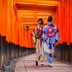 Women in traditional japanese kimonos walking at F...