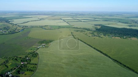 View from height to green fields with wheat in Russia