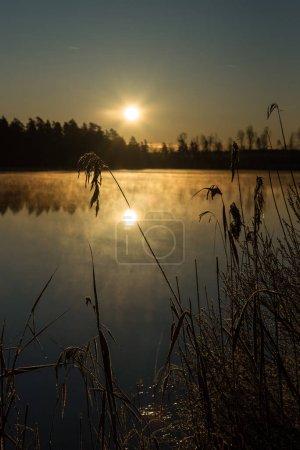 Photo pour Lac brumeux lever du soleil en hiver - image libre de droit