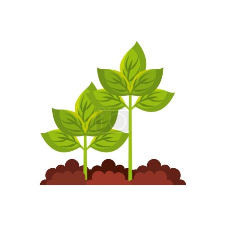 Illustration for Plant agriculture isolated icon vector illustration design - Royalty Free Image