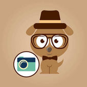 Hipster dog symbol camera design vintage background vector illustration