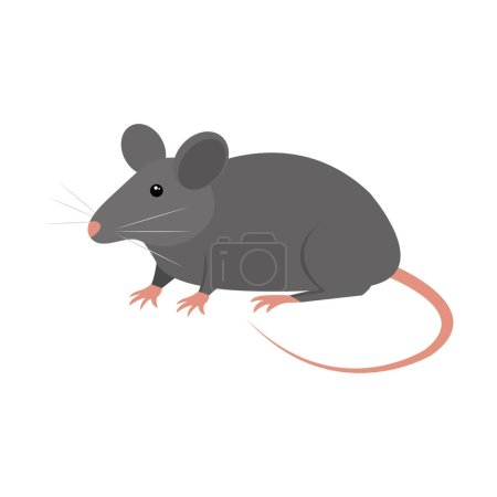 rat animal isolated icon