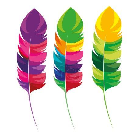 feathers multicolored carnival icon